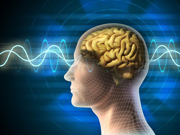 Inteligencia lingüístico-verbal
