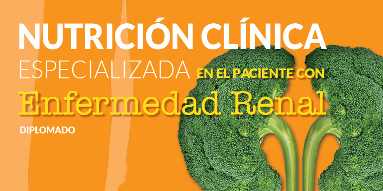 Nutrición Clínica Especializada en el Paciente con Enfermedad Renal