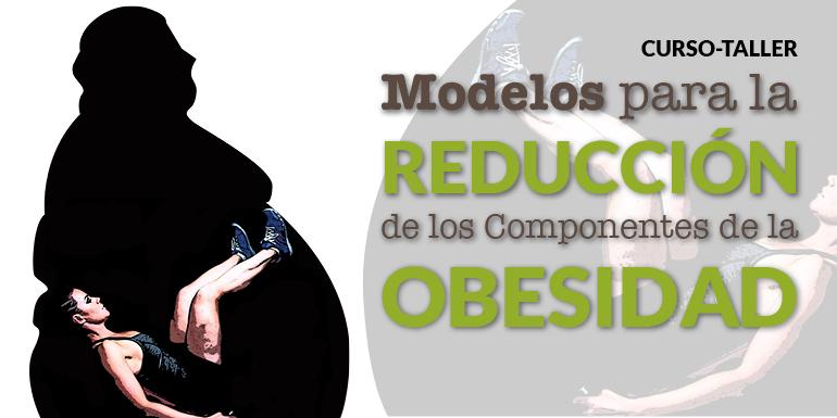 Curso Taller Modelos para la Reducción de los Componentes de la Obesidad