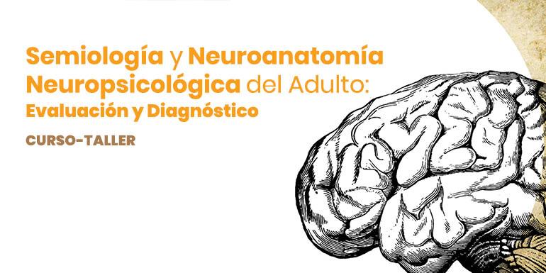 Semiología y Neuroanatomía Neuropsicológica del Adulto: Evaluación y Diagnóstico